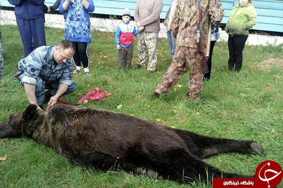 سلفی با جنازه خرس +تصاویر