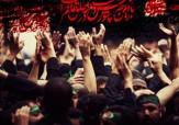باشگاه خبرنگاران -عزای امام حسین(ع) چقدر برای مسلمانان مهم است؟