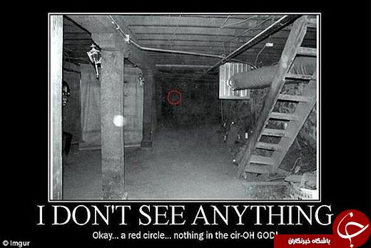این عکسهای عجیب شما را گیج میکند