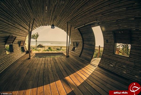 لوکس ترین خانه درختی +تصاویر