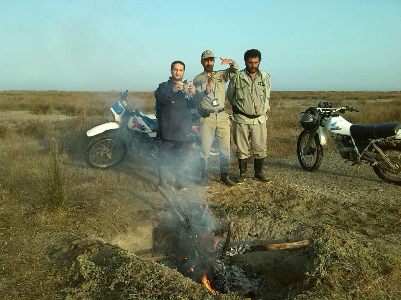 برچیدن دام های عربی صید پرندگان شکاری + تصاویر