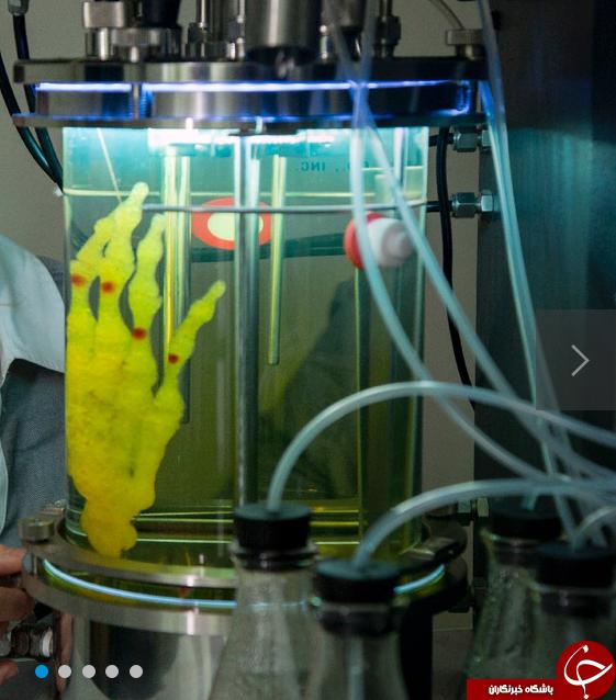 مراحل ساخت اسکلت انگشتان دست با تکنولوژی چاپ سه بعدی + فیلم