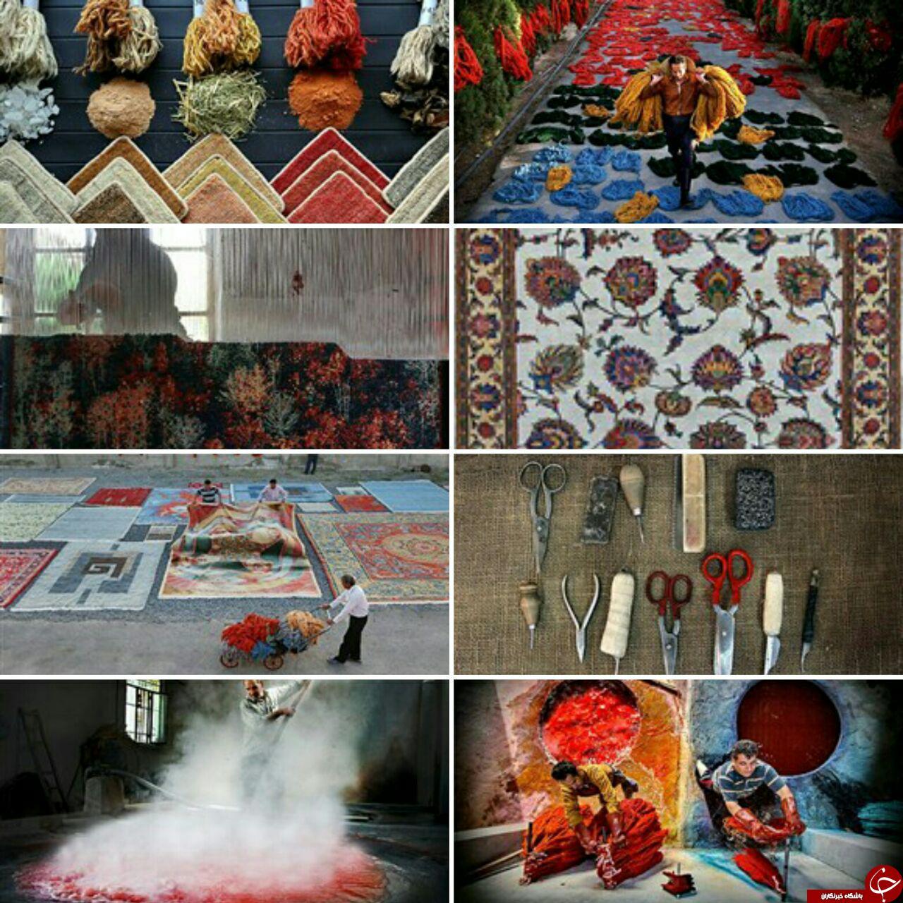 قالی هایی به رنگ طبیعت/پلیس هند /روسیه ۴۹ سال پایگاه دریایی/