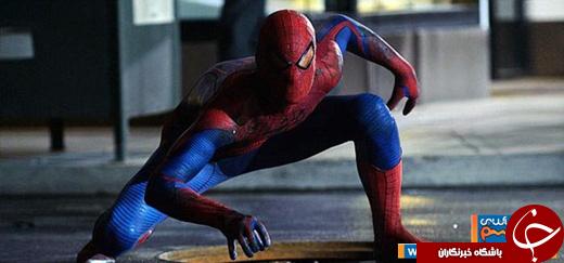 عکس/ مارمولک عنکبوتی!