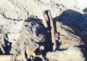 یک دشت پر از شهید/دانلود ویدئویی کشف شده از استخبارات صدام