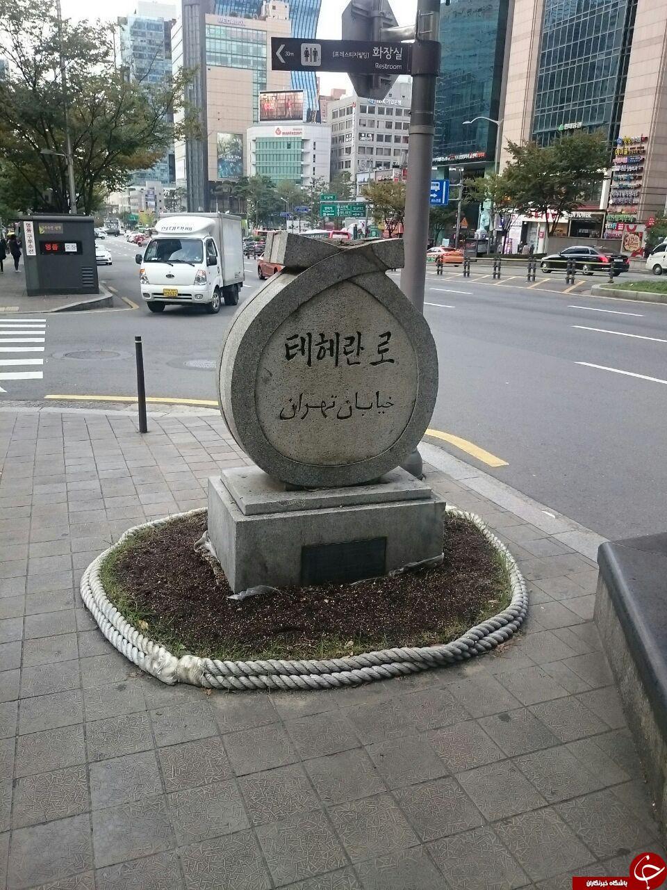 لحظه خوشحالی یک کوآلا/کتابخانه عمومی شهر پراگ/ پهپادهای در حال پرواز/صف نذری در کره جنوبی/