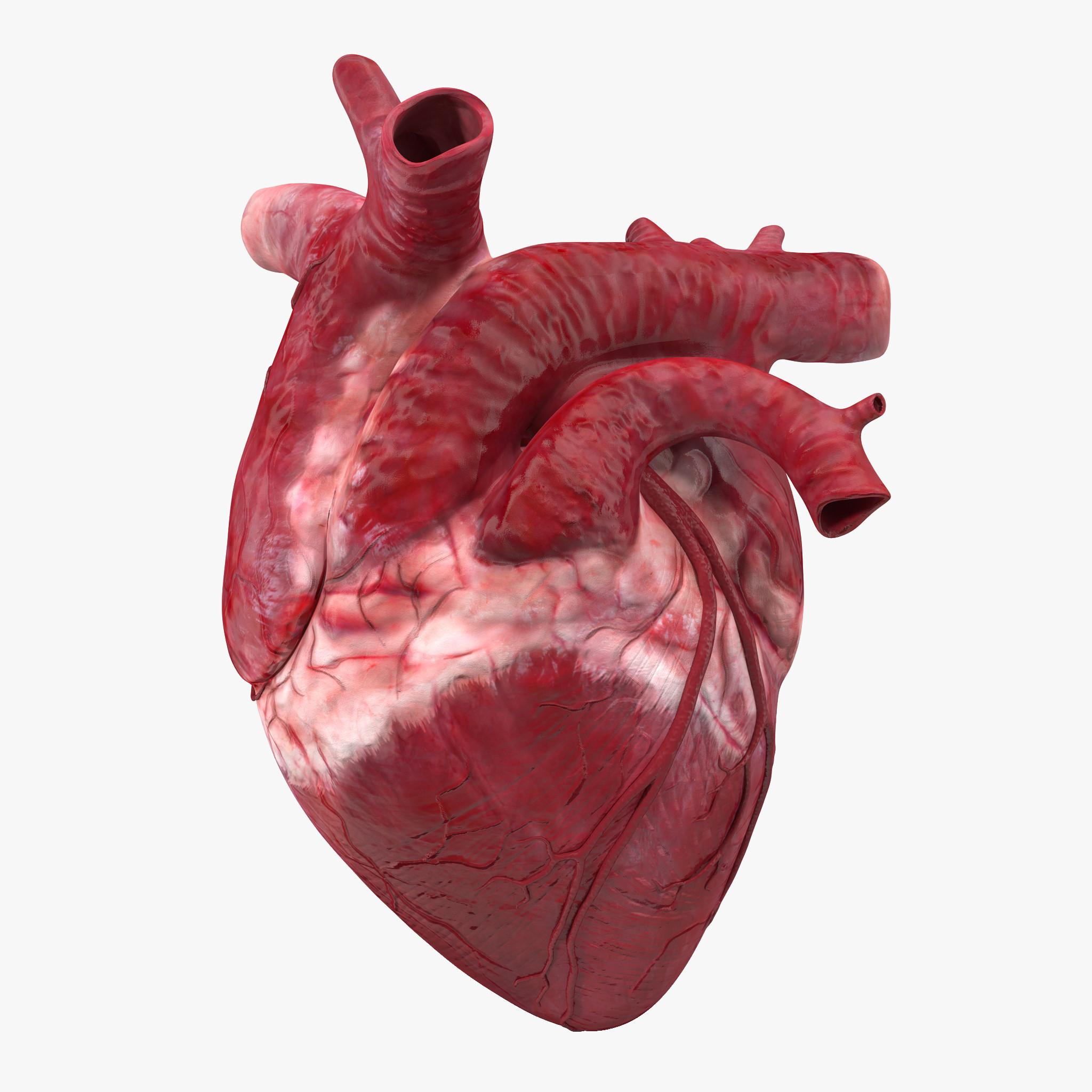 با این تست ساده، در 60 ثانیه از سلامت قلبتان باخبر شوید+عکس