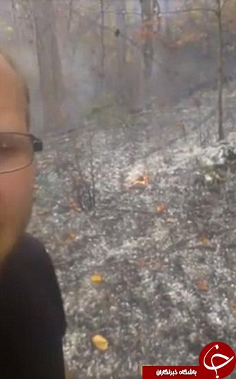 مجری که جنگل را آتش زده بود، دستگیر شد +تصاویر