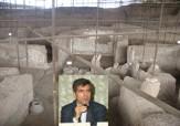 باشگاه خبرنگاران -اتمام مستند سازی 5 هزار شی کاوشهای باستان شناسی نیشابور
