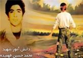 باشگاه خبرنگاران -شهید «محمد حسین فهمیده» به روایت خواهر