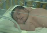 باشگاه خبرنگاران - تولد نوزاد پنج کیلویی در لاهیجان + فیلم
