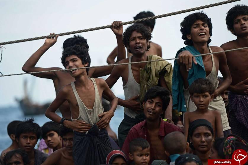 نسل کشی مسلمانان روهینگیا در میانمار/ مهاجرت 21 هزار نفر به بنگلادش + تصاویر