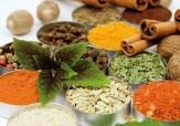 باشگاه خبرنگاران -صادرات 21 میلیون دلاری گیاهان دارویی/ تنها نیمی از درمانهای سنتی منشا گیاهی دارند