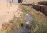 باشگاه خبرنگاران - رودخانهای از زباله در روستای سلطانآباد + فیلم