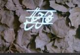 باشگاه خبرنگاران - پخش سریال «کوچک جنگلی» از شبکه افق/ نخستین قسمت یکشنبه 21 آذر