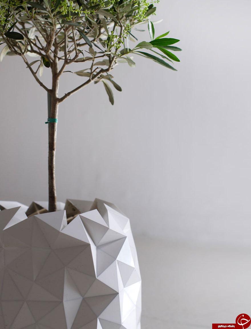 گلدانی که خودکار رشد می کند +تصاویر