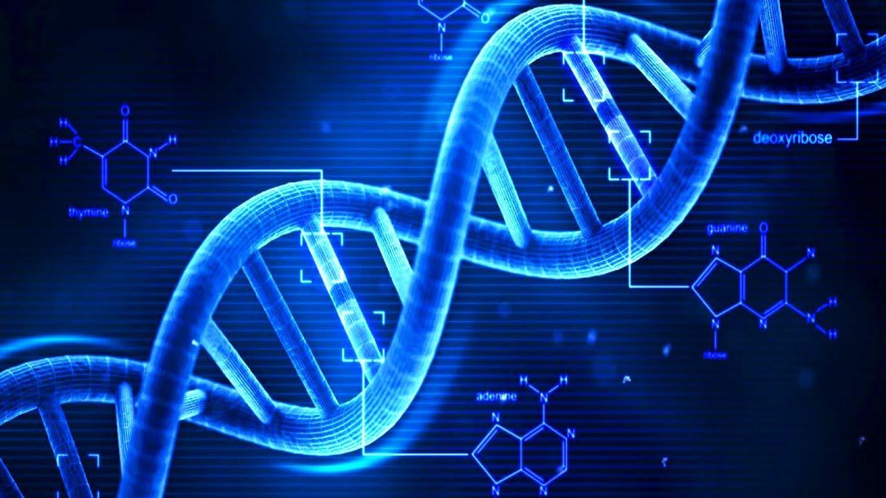 آزمایش DNA چگونه انجام می شود؟