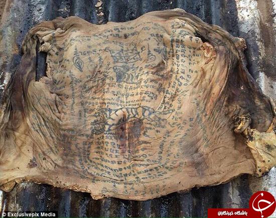 پوست این جنازه بعد از چندین سال سالم مانده است +تصاویر