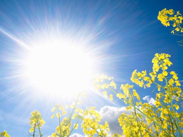 زمینی که یک بار بر آن آفتاب ت د