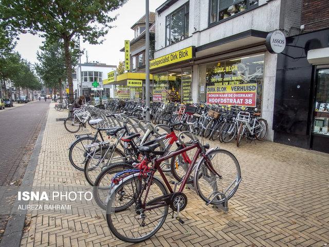 پارکینگی که به پارک تبدیل شد! +تصاویر