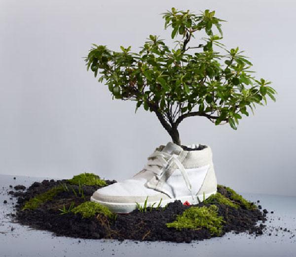توليد کفش با ذرت