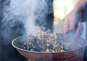 اسپند، ضدعفونیکننده هوا و دور کننده حشرات