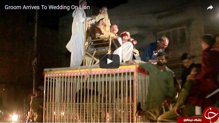 داماد پاکستانی در مراسم عروسی اش همه را غافلگیر کرد + فیلم