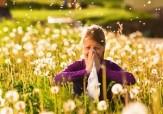 باشگاه خبرنگاران - آلرژی فصل بهار از دیدگاه طب سنتی چه زمانی بروز میکند؟