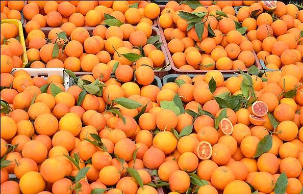 پرتقال فروش پیدا شد! +فیلم