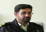 باشگاه خبرنگاران - دستگیری سارقان احشام در محلات