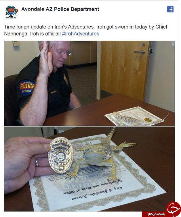 مارمولک شگفت انگیز آمریکایی افسر پلیس شد