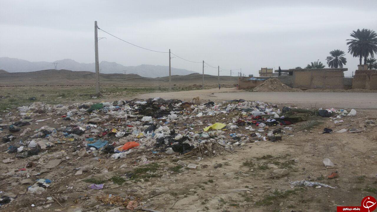 دپوی زباله در منطقه مسکونی + تصاویر