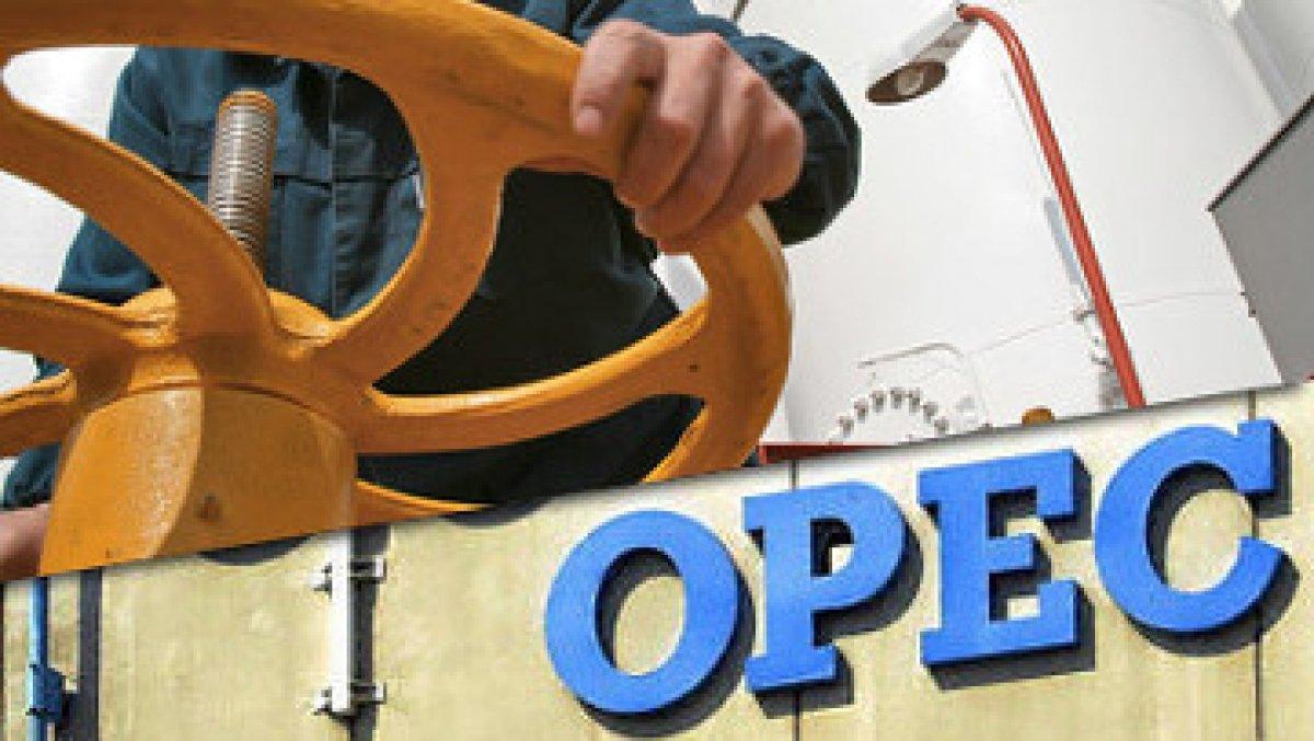 اوپک: تولیدکنندگان به دنبال ثبات در بازار نفت هستند