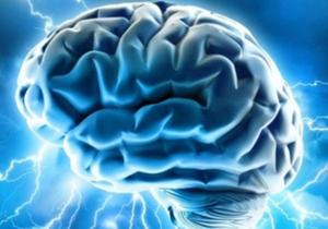 عضویت آزمایشگاه علوم اعصاب ان اس ال در انجمن بین المللی ای ای ای اس