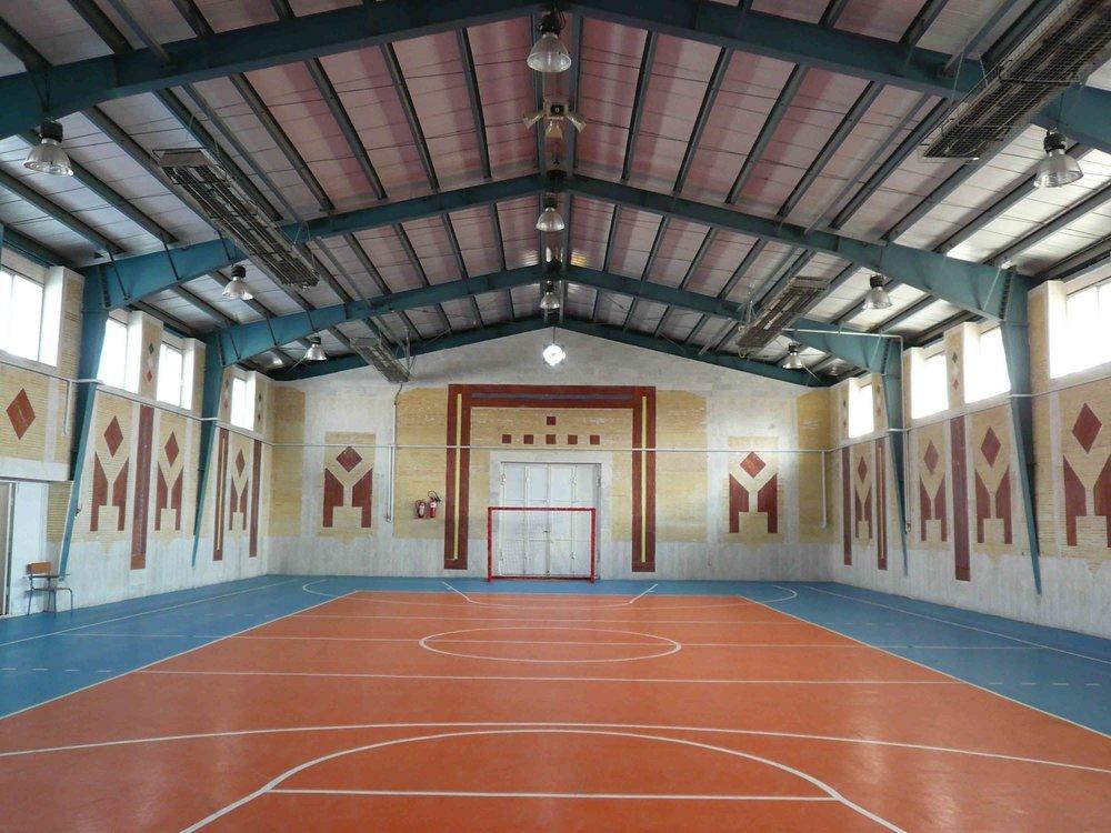 ساخت یک مجموعه ورزشی ویژه جانباران و توان یابان در همدان