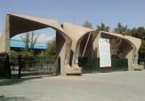 دانشگاه تهران عضو هیات علمی جذب میکند