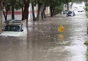 خسارت 600میلیارد ریالی بارندگی های اخیر در استان