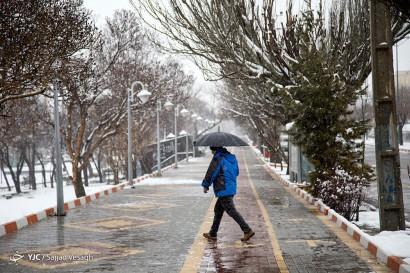 بارش برف در سومین روز از بهار- همدان