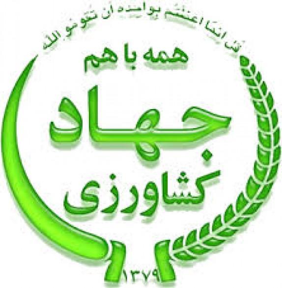 باشگاه خبرنگاران - هشدار به اهالی استان کرمان در خصوص فعاليتهای سودجويانه