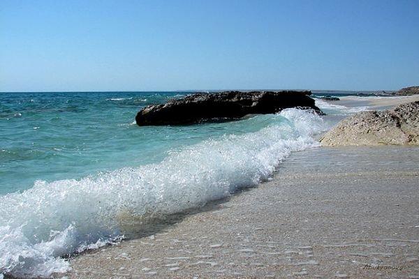 بودجه محیط زیست دریایی فقط 5 میلیارد تومان است