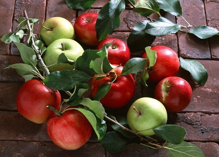 باغداران نگران مازاد سیب تولیدی هستند/ صادرات سیب تنها راهکار خروج از رکود