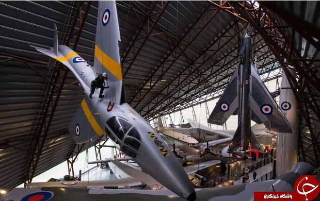 تصاویر روز: از برداشت نیلوفرهای آبی تا تعمیر جنگندهها در انگلیس
