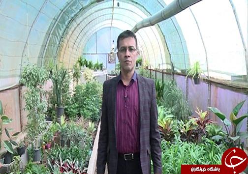 شغل مرتبط با مدرک مشکل اصلی کارجویان / گزارش از بانوی صادرکننده گل و گیاه