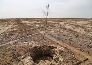 اجرایی شدن طرح مقابله با کانون های تولید ریزگرد در۳ شهر کشور