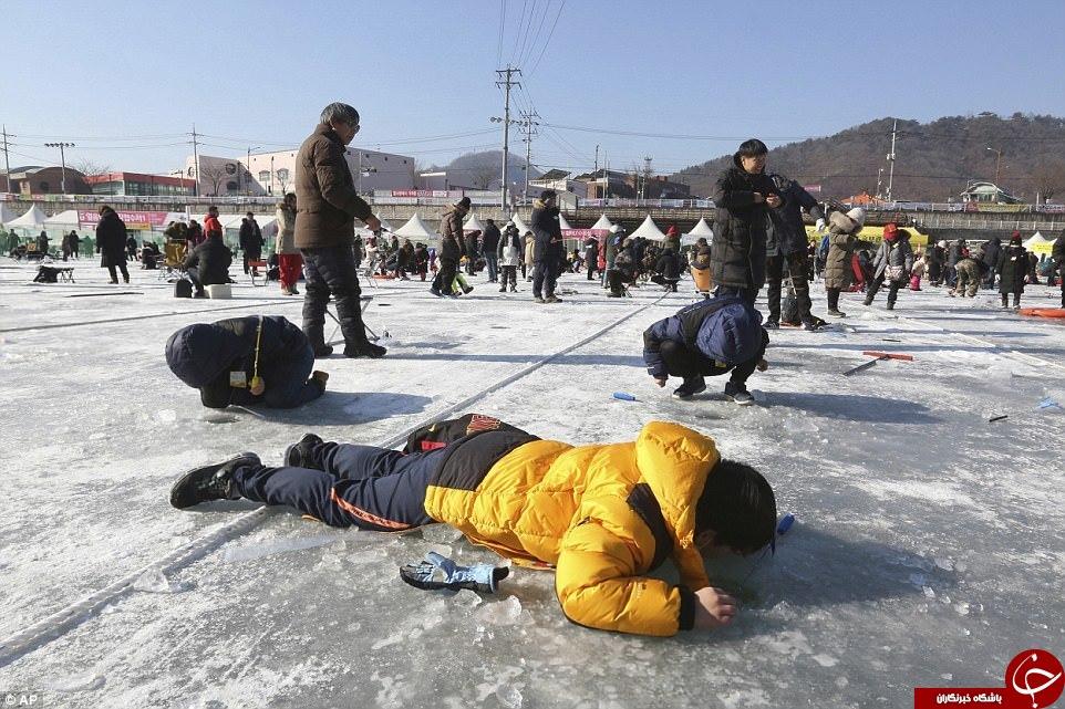 فستیوالی عجیب در کره جنوبی که بیش از 1 میلیون تماشاگر دارد + تصاویر