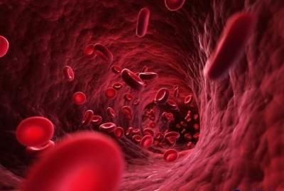 Znalezione obrazy dla zapytania غلظت خون باعث بروز بیماری