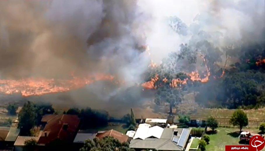 گرمای شدید در استرالیا آسفالت خیابانها را ذوب کرد + تصاویر