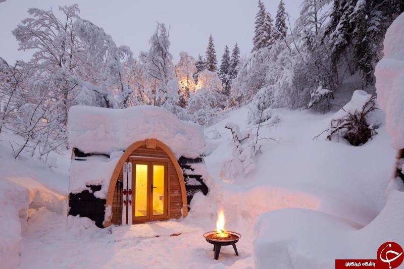 زمستان چه تاثیری بر متولدین ماههای مختلف سال میگذارد؟ +تصاویر
