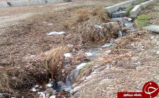 تصاویری از وروود فاضلاب و زباله به زرینهرود