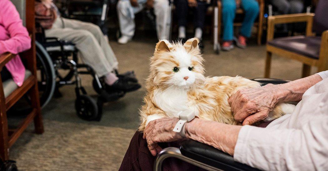 1-هوش مصنوعی پرستار نسل آینده سالمندان میشود2-دکتری که به شکل هوش مصنوعی به سراغ درمان سالمندان میرود3- درمان و کنترل آلزایمر با استفاده از روباتی به شکل گربه